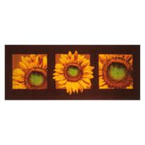 Tappetino cucina antiscivolo Girasole marrone 57 x 240 cm