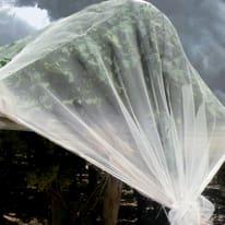 Rete di protezione anti grandine Iridium trasparente 4 x 5 m
