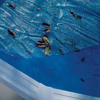 Copertura isotermica 305 x 472 cm per piscina