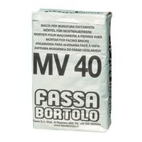Malta per muratura a faccia vista MV40 Fassa Bortolo 25 kg