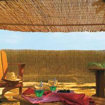 Arella Reedcane naturale L 5 x H 1,5 m