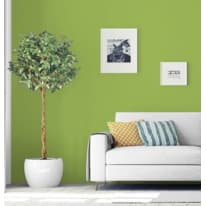 Idropittura superlavabile verede 150343greenery 2 L Pantone