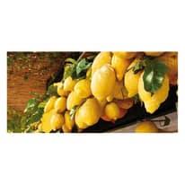 Fotomurale Limoni di Sorrento 210 x 100 cm