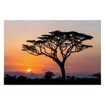 quadro su tela Africa 90x135