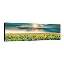 quadro su tela Canvas girasoli 40x125 40x125