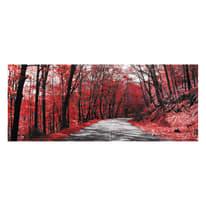 Quadro in vetro Red Woods 125x50 cm