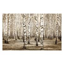 Quadro in legno Betulle 60x90 cm