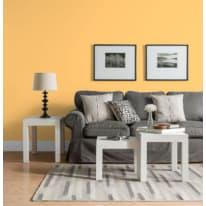 Pittura murale LUXENS 4 L arancio 6