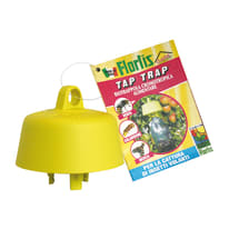 Trappola per insetti per formiche Tap Trap