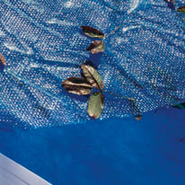 Copertura per piscina invernale in polipropilene 370 x 730 cmØ 370 cm