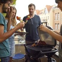 Barbecue elettrico WEBER Q2400 3000 W