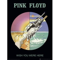 Stampa incorniciata Pink Floyd Tour 60x90 cm