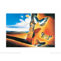 Stampa incorniciata Papillons 35x45 cm