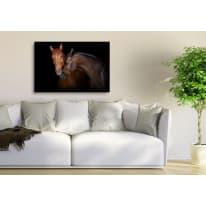 Quadro in vetro Horses 90x60 cm