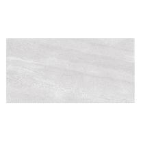 Piastrella Collettiva H 60 x L 120 cm bianco