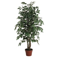 Pianta artificiale Ficus in vaso H 125 cm