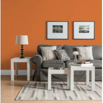 Pittura murale LUXENS 4 L arancio 3