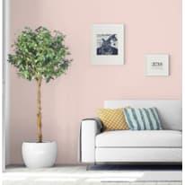Pittura murale PANTONE 2 L rosa quartz