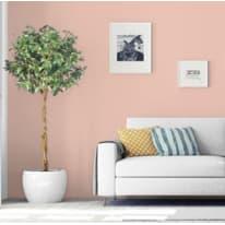 Pittura murale PANTONE MAX MEYER 2 L cameo rose