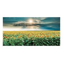 Quadro su tela Sunflowers 90x190 cm