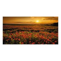 Quadro su tela Poppies field 90x190 cm