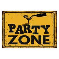 Quadro su tela Party Zone 24x35 cm