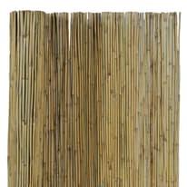 Canna intera bambù L 3 x H 1.5 m