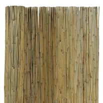 Canna intera bambù L 3 x H 1 m