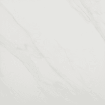 Piastrella Marmi H 60 x L 60 cm PEI 4/5 bianco