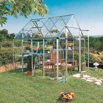 Serra da giardino L 254 x H 260 x P 249 cm