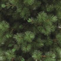 Albero di natale artificiale Marittimo verde H 210 cm