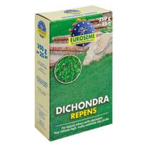 Seme per prato Dichondra repens 0.25 kg