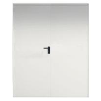 Porta tagliafuoco EI2 60 doppia L 120 x H 205 cm