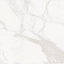 Piastrella Statuario H 80 x L 80 cm PEI 4/5 bianco