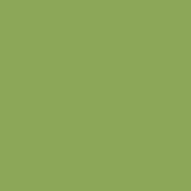 Acrilico verde Americana satinato 59 ml