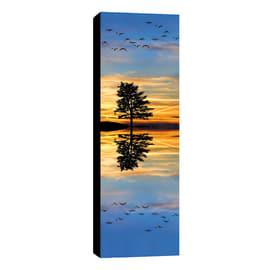 quadro su tela Canvas albero riflesso 40x125 40x125