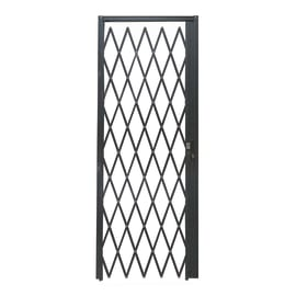 Cancelletto blindato DibiBlind grigio scuro L 80 x H 220 cm