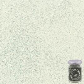 Glitter per finitura argento 90 g