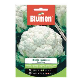 Semi da orto Cavolfiore bianco invernale