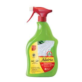 Diserbante Herbiclean AL Bayer 1 L