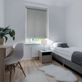 Tenda a rullo Ancona grigio 45x250 cm