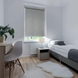 Tenda a rullo Ancona oscurante grigio 60x250 cm