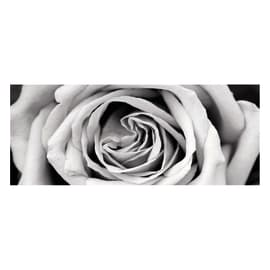 Quadro in vetro Black&White Rose 125x50 cm