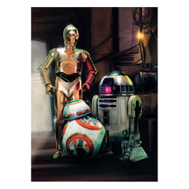 Carta da parati fotografia Star Wars three droid 184x254 cm