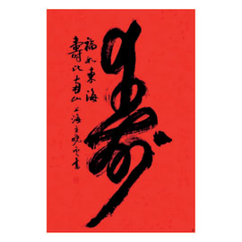 Poster Caratteri Cina 61x91.5 cm