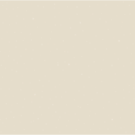Pittura decorativa ID 2 l beige hollywood effetto paillette