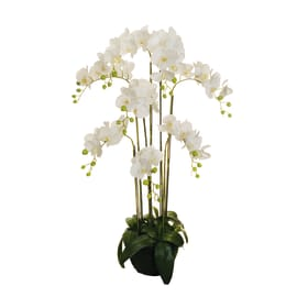 Pianta artificiale Orchidea in Real Touch H 125 cm