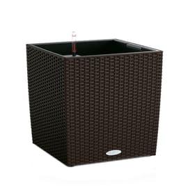 Vaso Cubico Cottage LECHUZA in plastica marrone H 50 , L 50 X P 50 cm