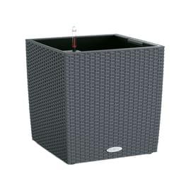 Vaso Cubico Cottage LECHUZA in plastica grigio H 50 , L 50 X P 50 cm