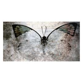 Quadro su tela Glitter Wow Butterfly 145x75 cm